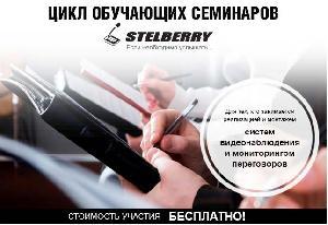 ГК ЭЛИКС приглашает на семинар «Mystery STELBERRY» 14 февраля